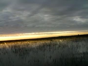 UNIVERSITY OF MONTEVALLO - DAVIS   HOLDERFIELD000 - Lake Okeechobee - 1 - video  3