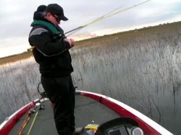 UNIVERSITY OF MONTEVALLO - DAVIS   HOLDERFIELD000 - Lake Okeechobee - 1 - video  4