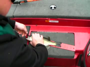 UNIVERSITY OF MONTEVALLO - DAVIS   HOLDERFIELD000 - Lake Okeechobee - 1 - video  8