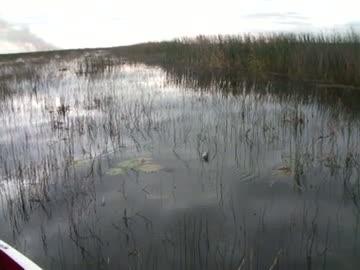 UNIVERSITY OF MONTEVALLO - DAVIS   HOLDERFIELD00 - Lake Okeechobee - 1 - video  10