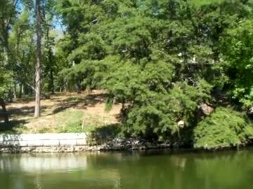 TREVECCA NAZARENE UNIVERSITY - WALTERS   LAWSON000 - Lake Chickamauga - 1 - video  7