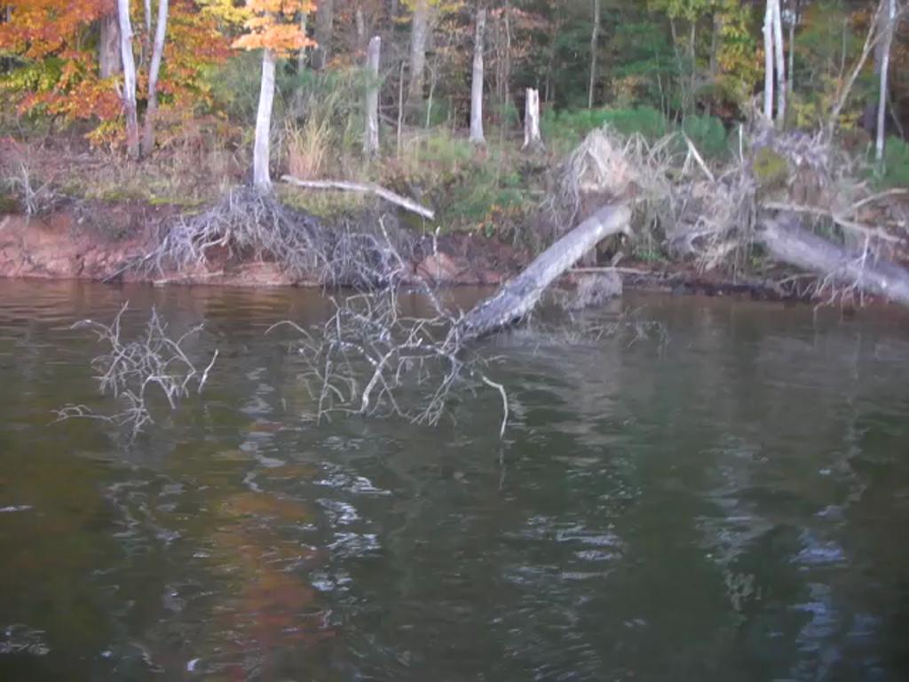 VIRGINIA TECH - WHITE   REJZER000 - Northern Regional - Jordan Lake - 1 - video  2