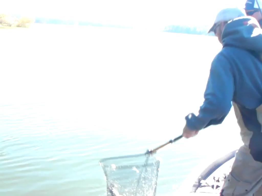 VIRGINIA TECH - WHITE   REJZER00 - Northern Regional - Jordan Lake - 1 - video  13