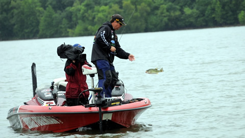 Reeltime Report  Kentucky Lake, Day 4