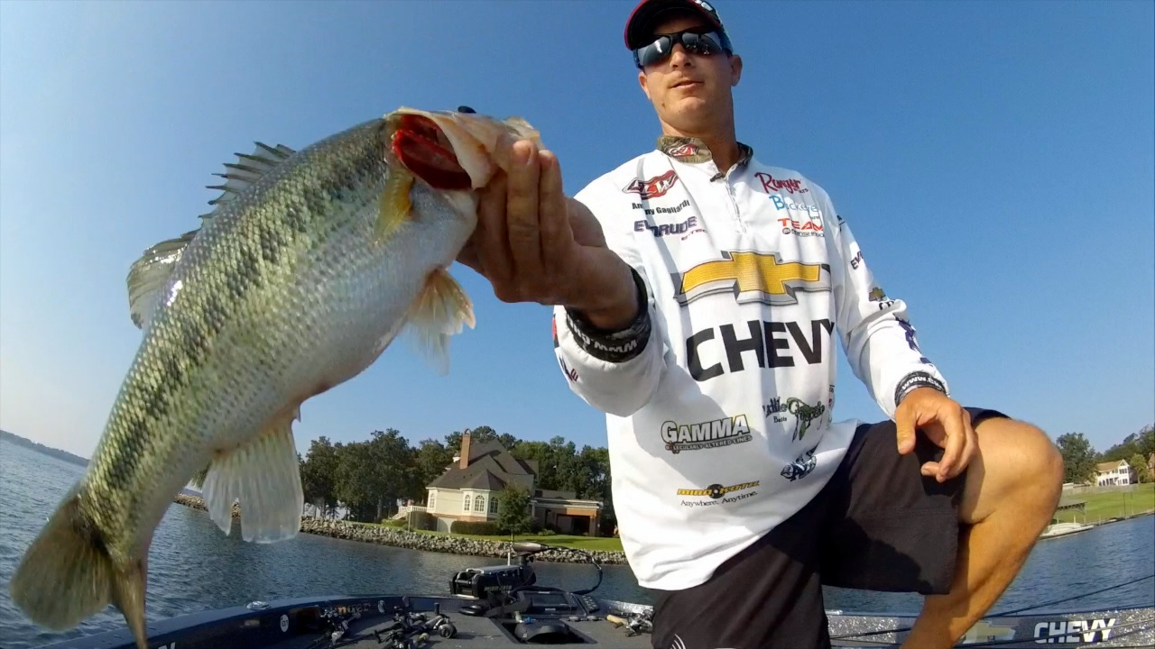 Reeltime Report: Forrest Wood Cup, Lake Murray, Day 4