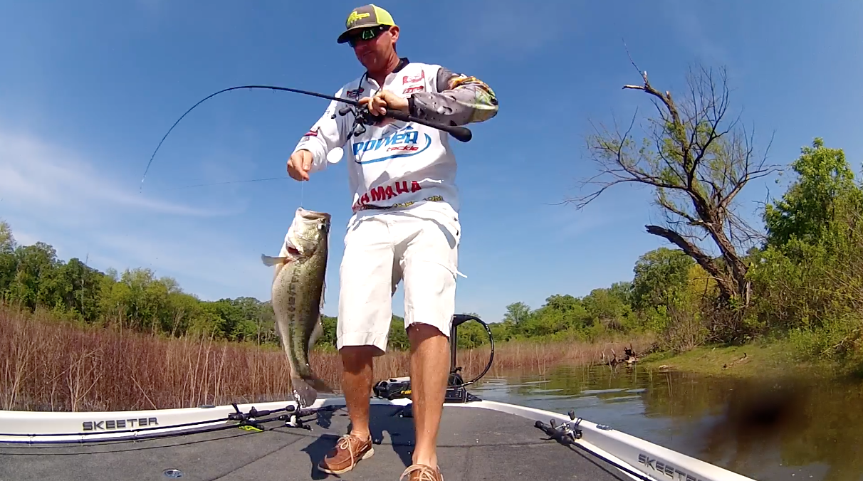 Ray Hanselman Crushes Them on a Frog
