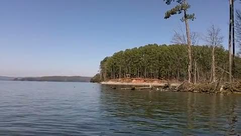 FLORIDA GULF COAST - EDWARDS   FARMER000 - Lake Guntersville - 1 - video  8