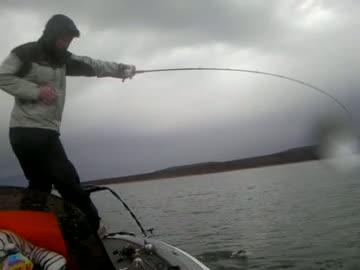 NORTHERN ARIZONA UNIVERSITY - ALBRIGHT   PERKINS000 - Lake Roosevelt - 1 - video  5