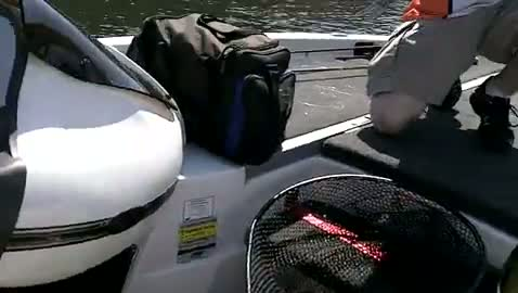 OKLAHOMA STATE UNIVERSITY - VALENTA   SNYDER000 - Toledo Bend - 1 - video  8