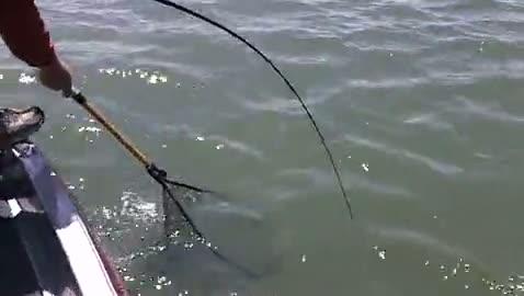 OKLAHOMA STATE UNIVERSITY - ELLIOTT   GONSOULIN00 - Lake Texoma - 1 - video  10