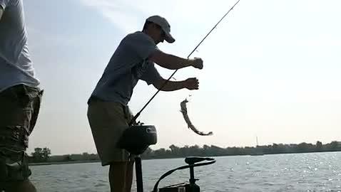 WINONA STATE UNIVERSITY - BARTON   PUSTOL000 - Detroit River - 1 - video  8