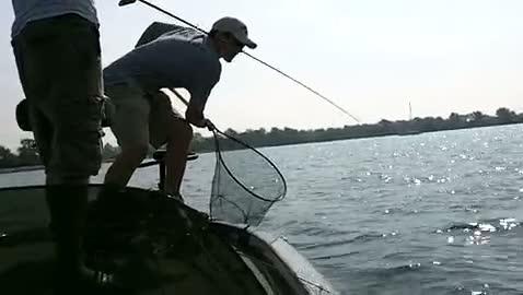WINONA STATE UNIVERSITY - BARTON   PUSTOL000 - Detroit River - 1 - video  9