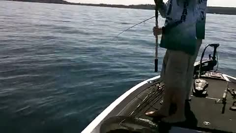 MICHIGAN STATE UNIVERSITY - RUMPF JR.   BAKER00 - 1000 Islands - 1 - video  21