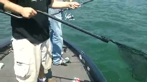 WAYNE STATE UNIVERSITY - KELLER   SMITH00 - Lake Erie - 1 - video  14