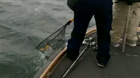 BAYLOR UNIVERSITY - GARLAND   BAUER000 - Lake Amistad - 1 - video  3