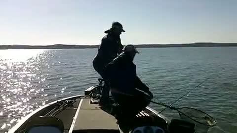 UNIVERSITY OF TEXAS - TYLER - MCCLELLAN   BROWN000 - Sam Rayburn Reservoir - 1 - video  7