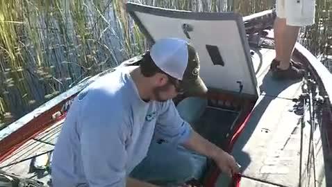 GEORGIA COLLEGE - HENRY   KELLY000 - Lake Okeechobee - 1 - video  5