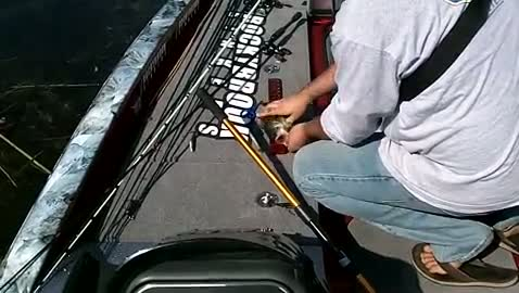 GEORGIA COLLEGE - HENRY   KELLY00 - Lake Okeechobee - 1 - video  13