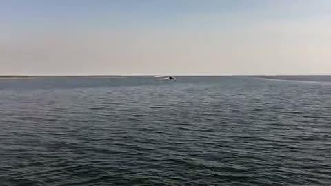 SOUTHERN MISSISSIPPI - WARSHAUER   GRAHAM00 - Lake Okeechobee - 1 - video  16