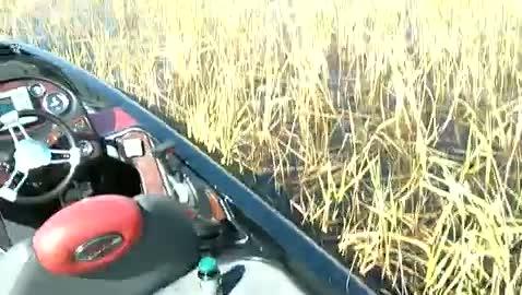 UNC CHARLOTTE - BEAM   SELF000 - Lake Okeechobee - 1 - video  6