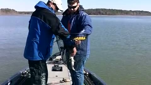 UNIVERSITY OF TEXAS - TYLER - MCCLELLAN   BROWN00 - Sam Rayburn Reservoir - 1 - video  10