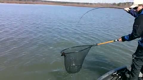 UNIVERSITY OF TEXAS - TYLER - MCCLELLAN   BROWN00 - Sam Rayburn Reservoir - 1 - video  11