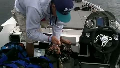 COLUMBUS STATE UNIVERSITY - DAVIS   MANASAN000 - Lake Seminole - 1 - video  3