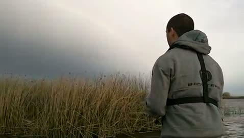 UNIVERSITY OF OREGON - CROWL   BLISS000 - California Delta - 1 - video  3
