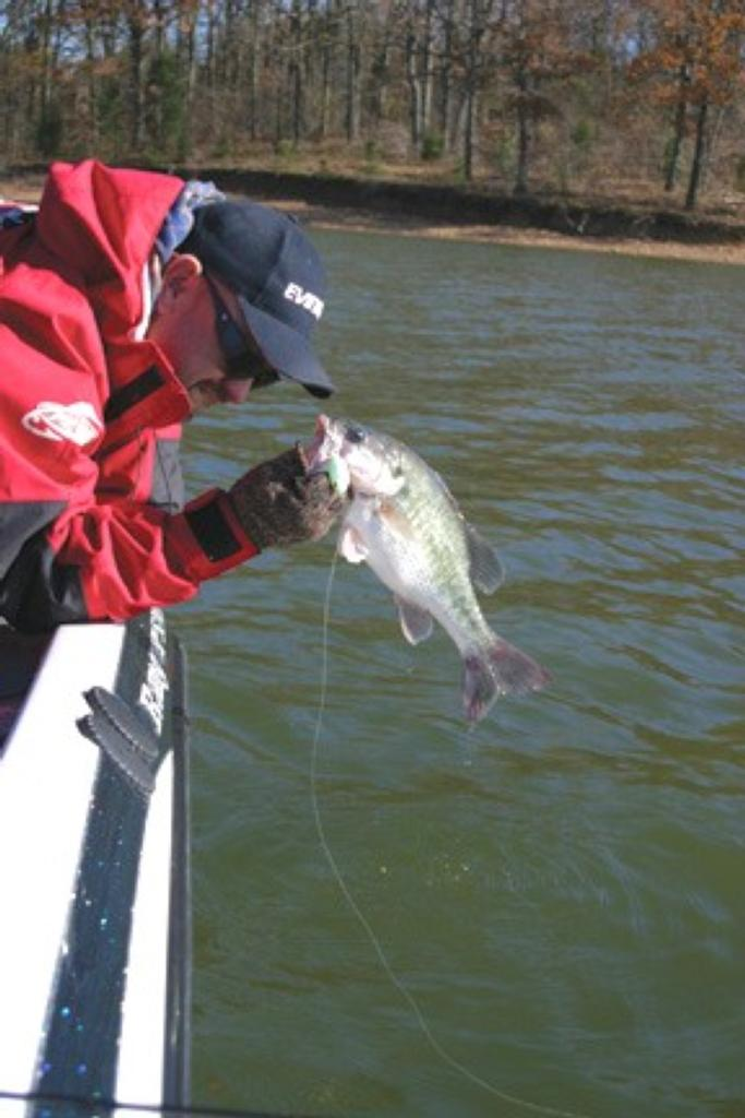 Cold water bass flw fishing articles for Deep water bass fishing