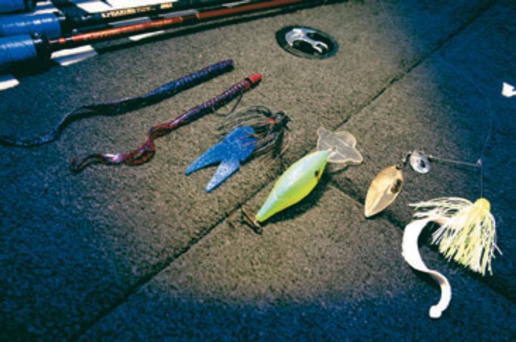 Electric bass flw fishing articles for Deep water bass fishing