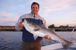 Big stripers tend to migrate more than small stripers. Mature stripers often migrate from Maine to North Carolina.