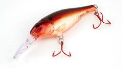 John Prior of Ila, Ga., is skilled at customizing paint jobs for crankbaits and jerkbaits.