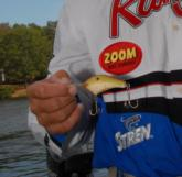David Wright's winning crankbait, a Zoom 300-E in a color called