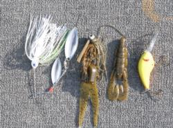 Brownlee's winning lures: a Mini-Me spinnerbait, 1/2-ounce Davis Lures Paca jig, Texas-rigged Zoom speed craw and a Little Earl crankbait.