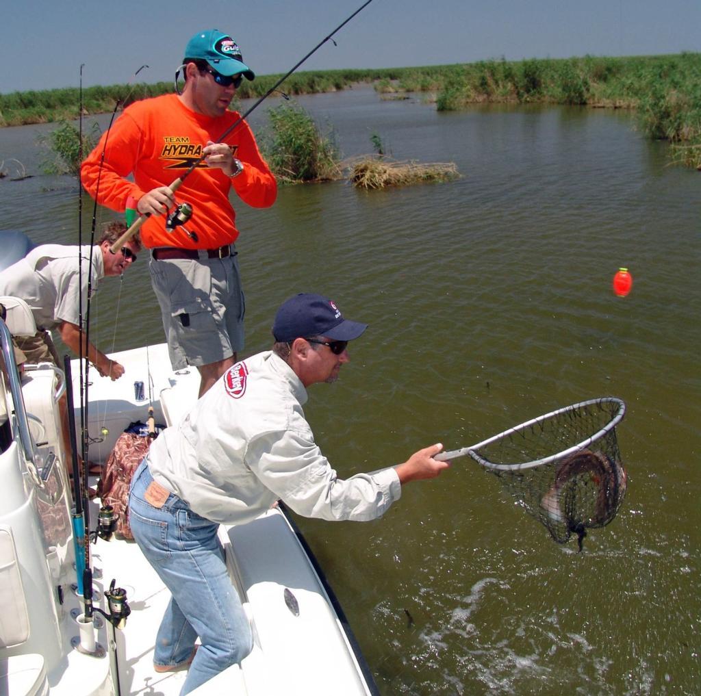Marsh Madness Flw Fishing Articles