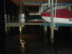 Pier lights act as homing beracons for bait - and more importantly, sport fish.