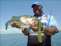California pro Ish Monroe helped design a jumbo 7-inch tube that temps big bass shallow and deep.