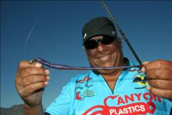 Oregon angler Chris Ricci likes big worms on his Texas rig, but he won't hesitate to rig a 10-incher on his dropshot.