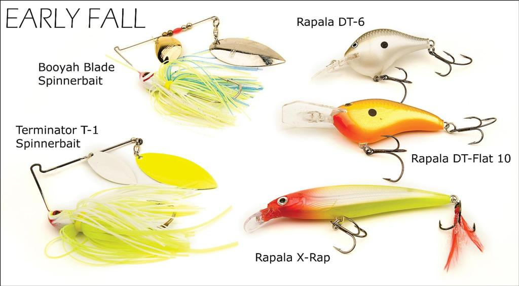 flw fishing: articles, Hard Baits