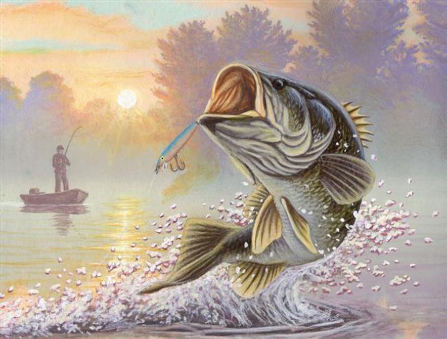 Flw fishing articles for Bass fishing art