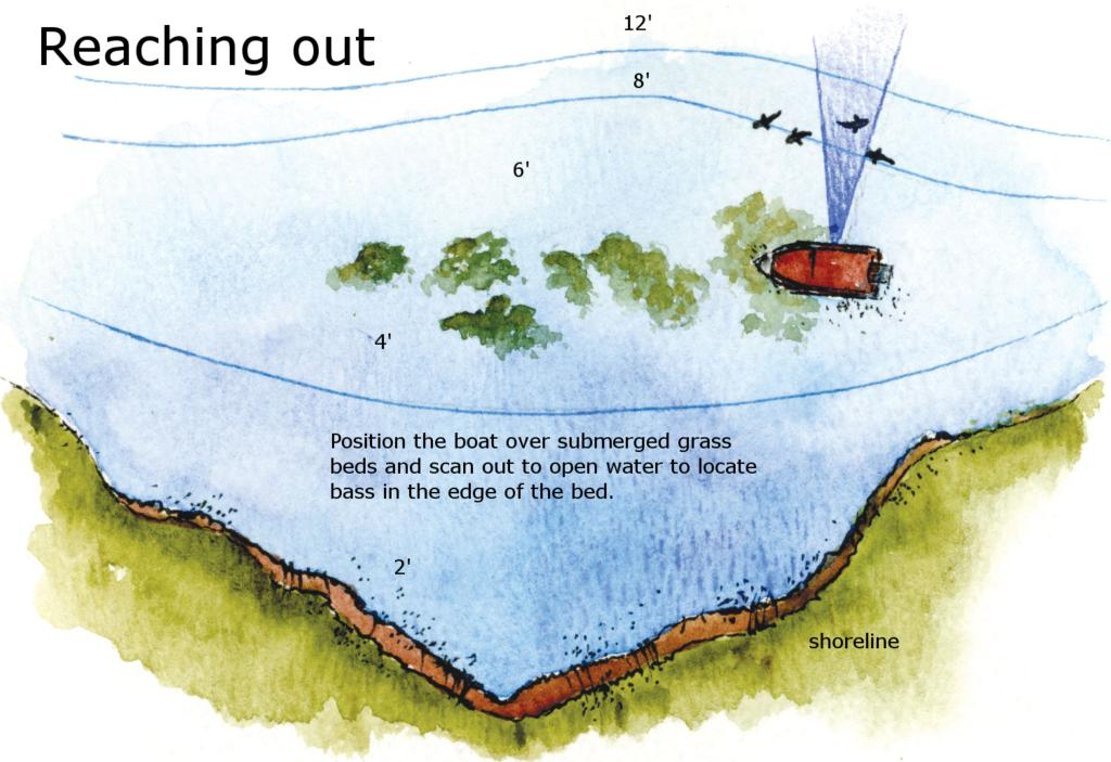 The sideways view of shallow water flw fishing articles for Bed fishing for bass