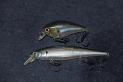 A crankbait and a ripbait will factor prominently into Charley Almassey