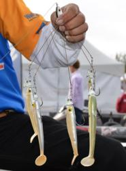 Paul Elias used the Alabama rig to win the 2011 FLW Tour event on Lake Guntersville.