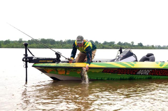 Instead of matching the hatch, bass pro Shad Schenck goes big and loud with his offereings to get the attention of bass among the bait.