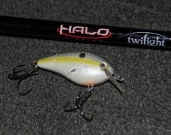 Florida pro JT Kenney will hunt for his big fish with a Strike King KVD 1.5 crankbait.