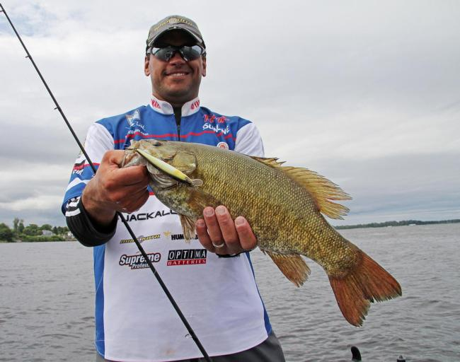 Ranger pro David Wolak often targets fall schoolers with jerkbaits.