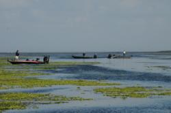 On the final day of practice, the mats in the north end of Okeechobee were starting to get a little crowded.