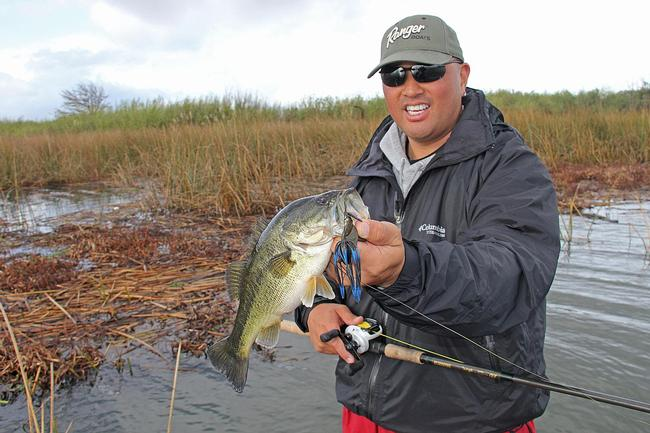 Heavily weighted punch baits are a key part of your arsenal when targeting bass in heavy cover.