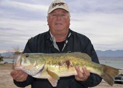 Steve Biechman of Redding, Calif., parlayed a total catch of 14 pounds, 13 ounces into a second-place finish in the Co-angler Division after Thursday's opening round of competition.