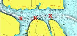 Target Area: Deep feeder channels leading into spawning areas Reservoir Type: Lowland/big river